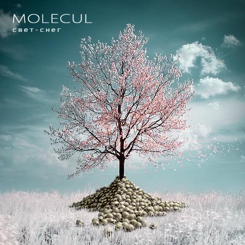 Molecul дискография скачать торрент - фото 7